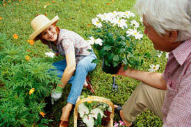 "A Green Thumb Can Add ""Spring"" to the Steps of Seniors"