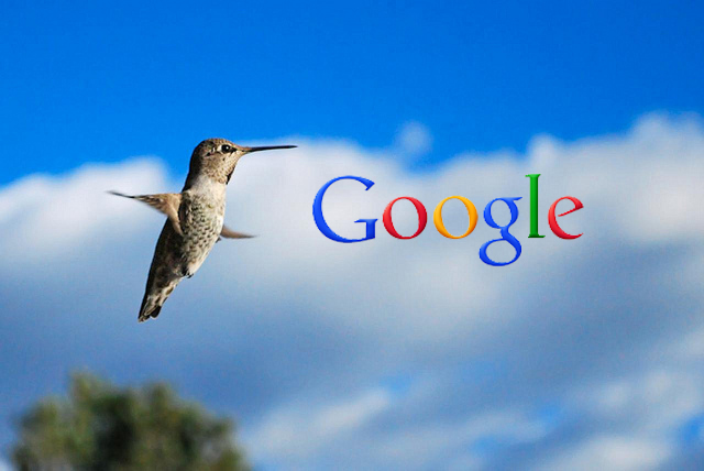 Google Hummingbird: Finding the Nectar in the New SEO Algorithm